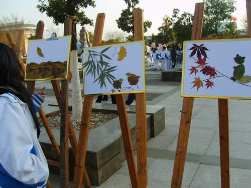 """树叶粘贴画制作的""""蝴蝶"""",""""花朵"""",""""太阳"""""""